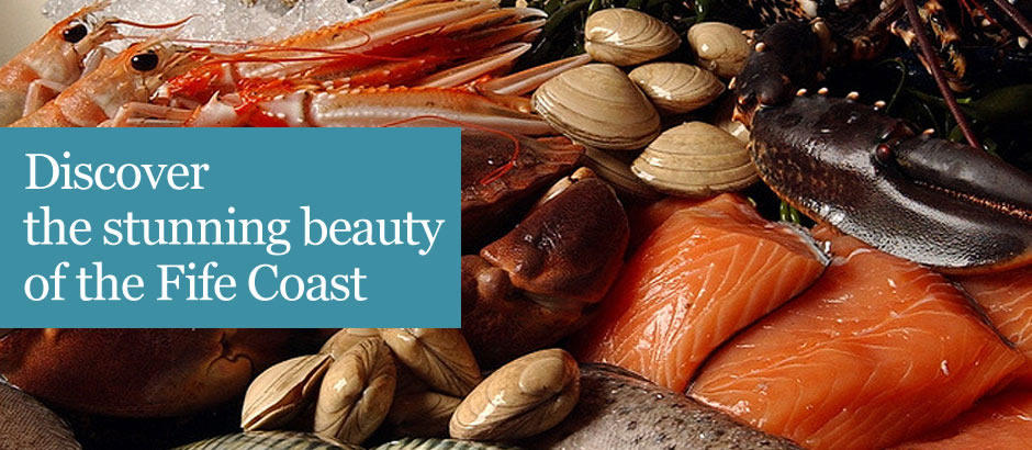 A selection of seafood caught off the coast of fife served at one at St Andrews finest restaurants. One of the local activities to be enjoyed at Tayport Links Caravan Park, a luxury Scottish caravan park that has luxury self-catering